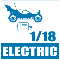 1/18 Scale Electric