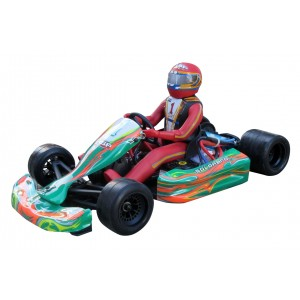 HSP Go Kart Brushless Electric 1/5 Scale Pro Version W/LIPO 2.4G RTR